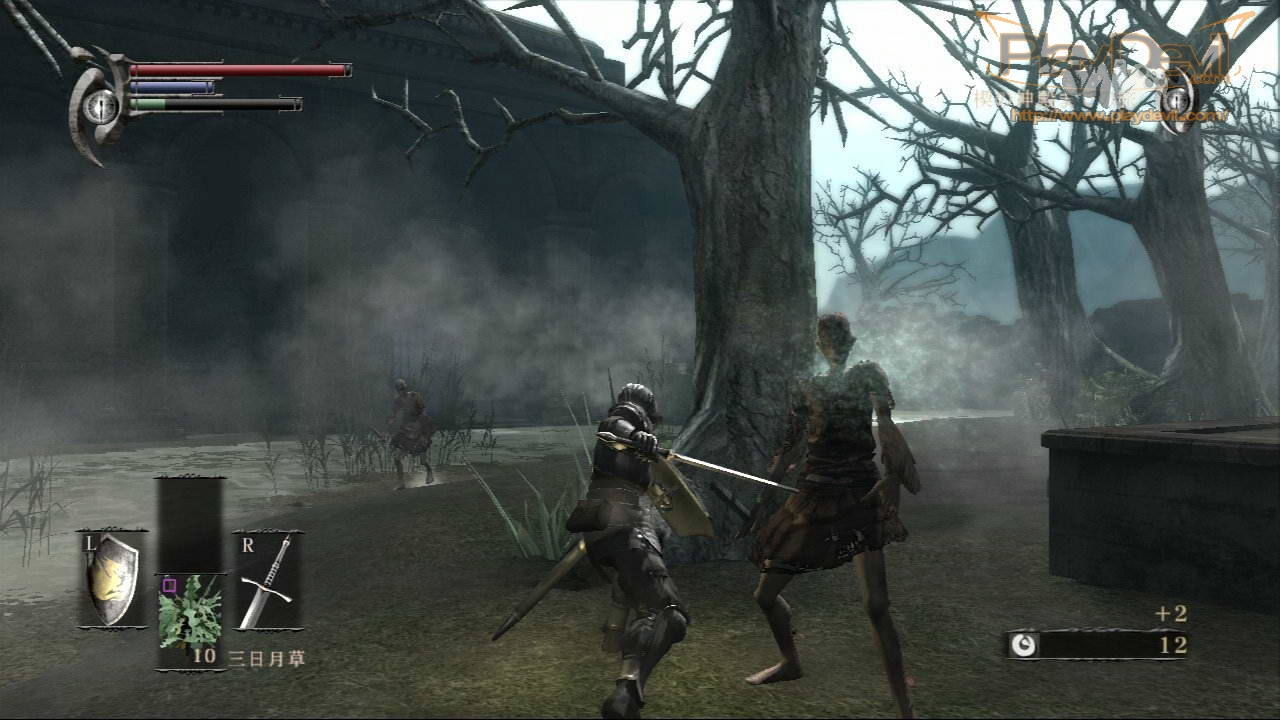 DemonS Souls Pc