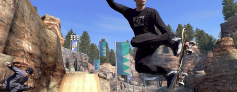 Skate 3 version for PC